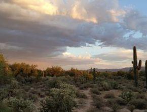 Arizona's Wild West is Alive and Kicking