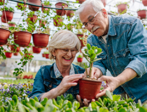 The Health Benefits and Considerations when Gardening