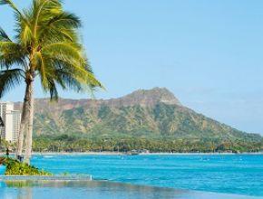 Focus on Hawaii