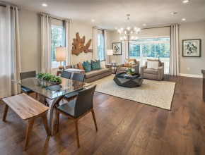 Regency at South Whitehall  Villas Collection