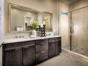 Regency at Stonebrook  Sage Meadow Collection