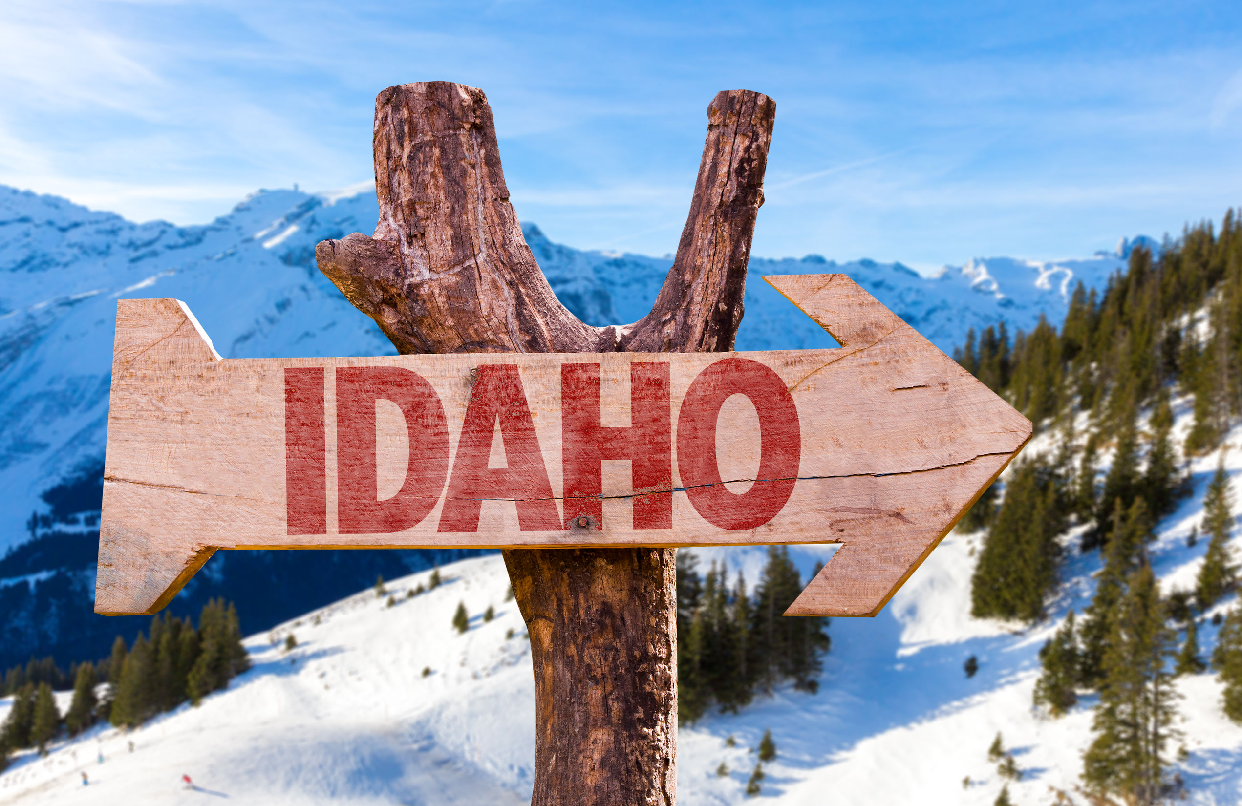 idaho wooden sign with winter background